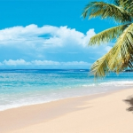 Vacanza rovinata